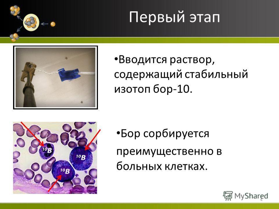 Первый этап Вводится раствор, содержащий стабильный изотоп бор-10. 4 Бор сорбируется преимущественно в больных клетках.