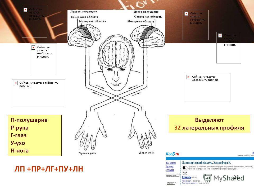 «Рука – это вышедший наружу мозг человека». И.Кант 1 коза 2 ножницы 3 кольцо 4 кулак-ладонь 20