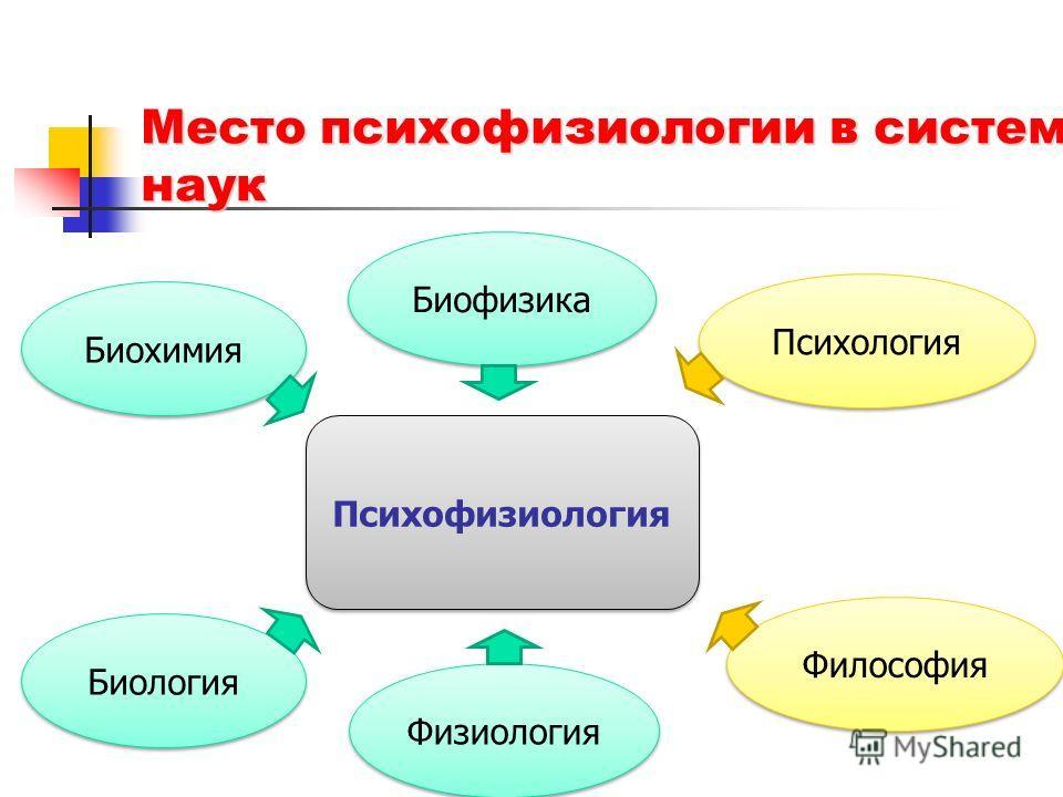 Место психофизиологии в системе наук Биофизика Биохимия Биология Физиология Психология Философия Психофизиология