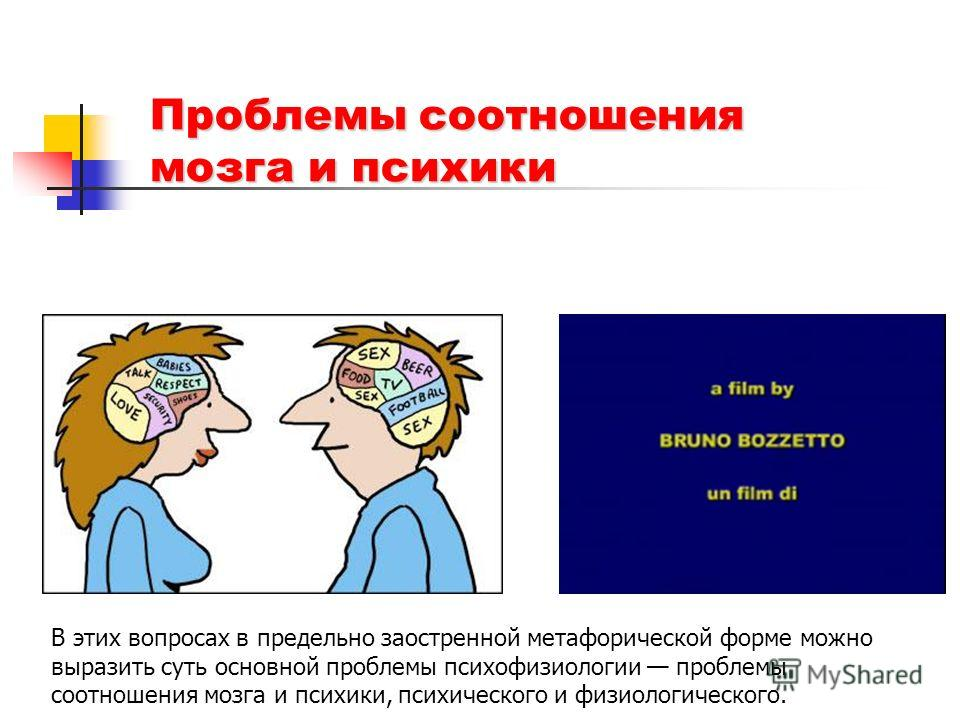 Проблемы соотношения мозга и психики В этих вопросах в предельно заостренной метафорической форме можно выразить суть основной проблемы психофизиологии проблемы соотношения мозга и психики, психического и физиологического.