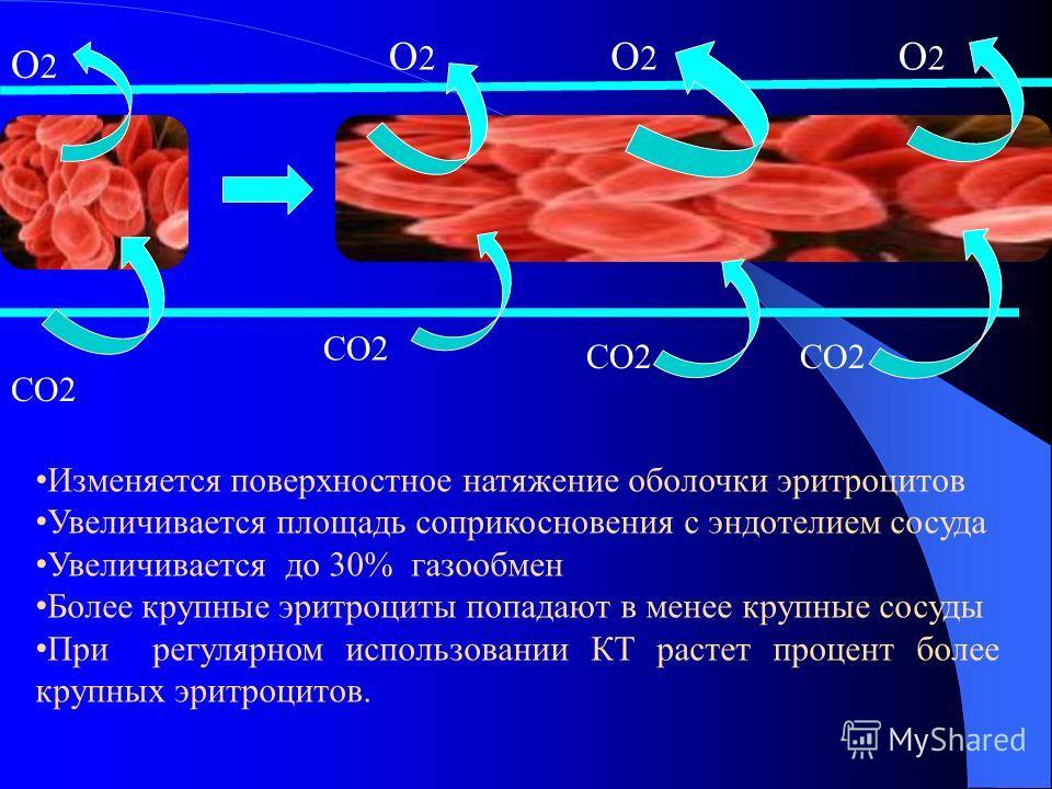 КТ снижает агрегационную способность тромбоцитов и эритроцитов (у последних за счет повышение отрицательного заряда), снижается вязкость крови, происходит расширение сосудов. В результате достигается улучшение кровотока в мелких сосудах (капиллярах и