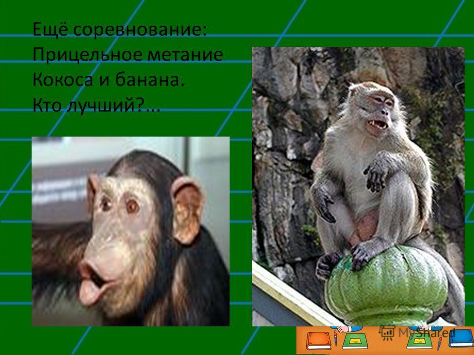 Ещё соревнование: Прицельное метание Кокоса и банана. Кто лучший?...