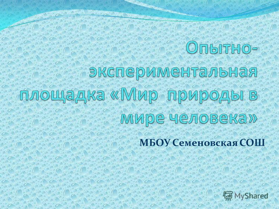 МБОУ Семеновская СОШ
