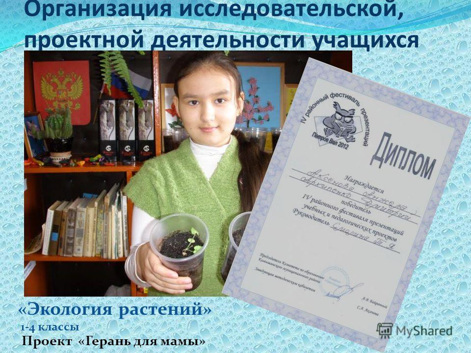 Организация исследовательской, проектной деятельности учащихся «Экология растений» 1-4 классы Проект «Герань для мамы»