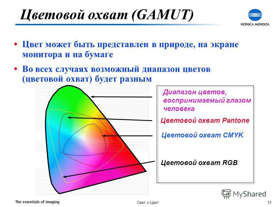 Свет и Цвет 13 Диапазон цветов, воспринимаемый глазом человека Цветовой охват Pantone Цветовой охват CMYK Цветовой охват RGB w Цвет может быть представлен в природе, на экране монитора и на бумаге w Во всех случаях возможный диапазон цветов (цветовой
