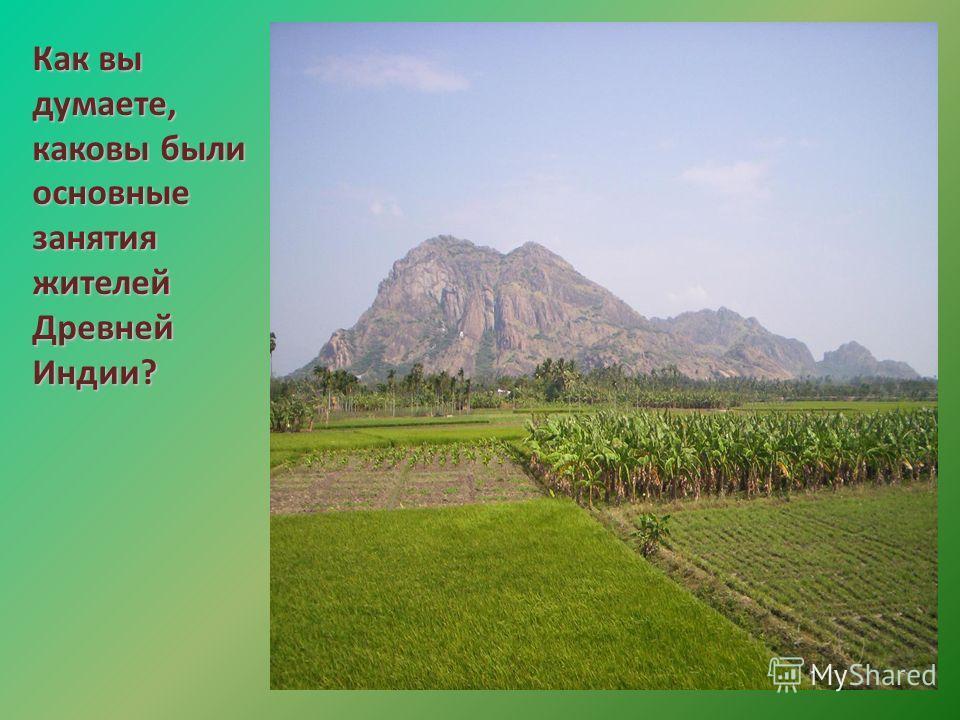 Как вы думаете, каковы были основные занятия жителей Древней Индии?
