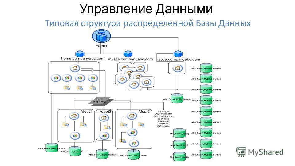 Типовая структура распределенной Базы Данных Управление Данными