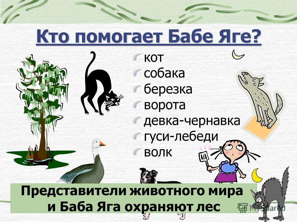 Кто помогает Бабе Яге? кот собака березка ворота девка-чернавка гуси-лебеди волк Представители животного мира и Баба Яга охраняют лес
