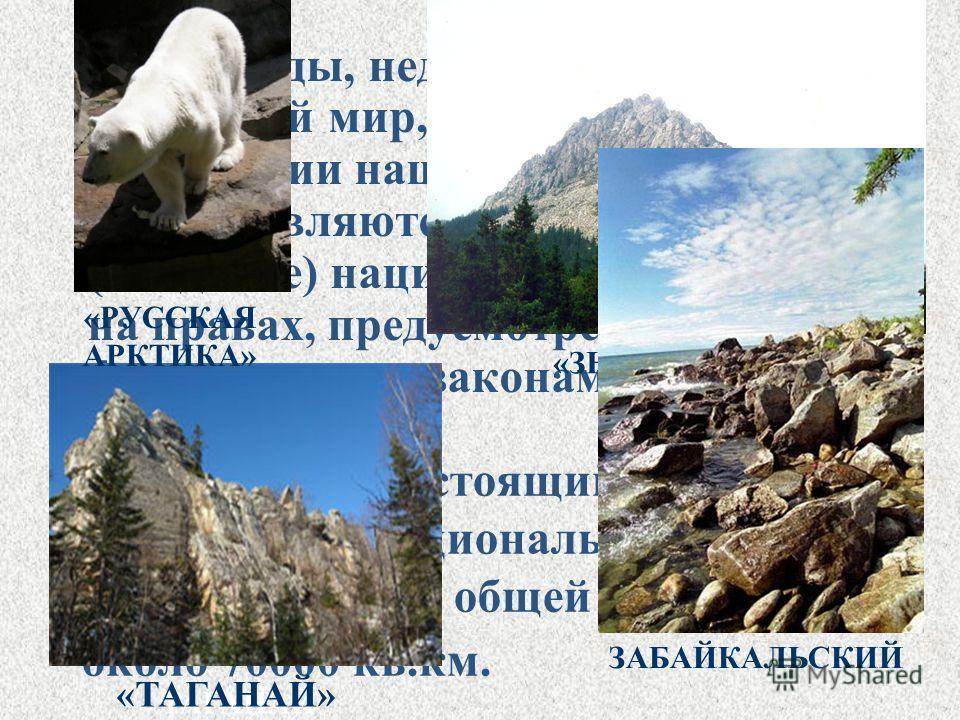 В России на настоящий момент действует 35 национальных парков в 36 субъектах РФ общей площадью около 70000 кв.км. Земля, воды, недра, растительный и животный мир, находящиеся на территории национальных парков, предоставляются в пользование (владение)