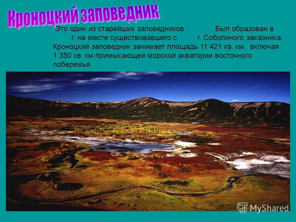 Это один из старейших заповедников России. Был образован в 1934 г. на месте существовавшего с 1882 г. Соболиного заказника. Кроноцкий заповедник занимает площадь 11 421 кв. км, включая 1 350 кв. км примыкающей морской акватории восточного побережья К