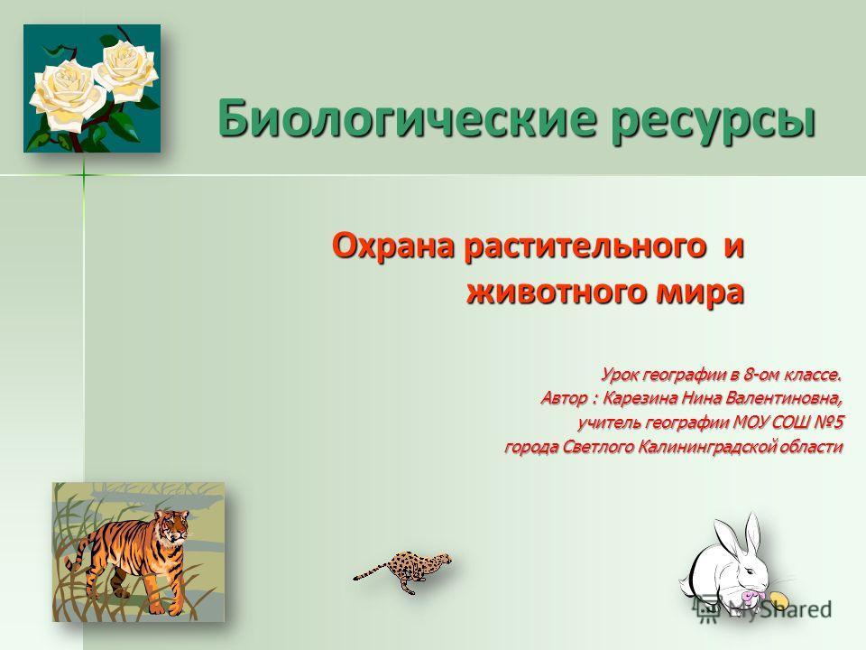 Растительный и животный мир россии урок географии 8 класс