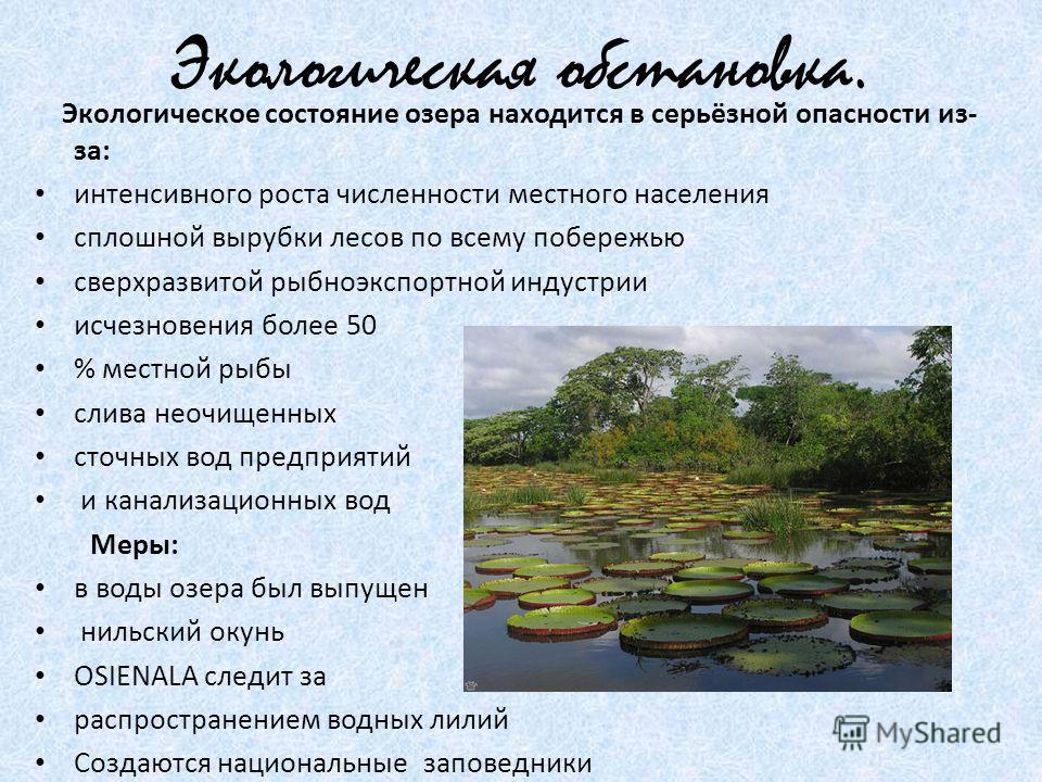 Экологическая обстановка. Экологическое состояние озера находится в серьёзной опасности из- за: интенсивного роста численности местного населения сплошной вырубки лесов по всему побережью сверхразвитой рыбноэкспортной индустрии исчезновения более 50