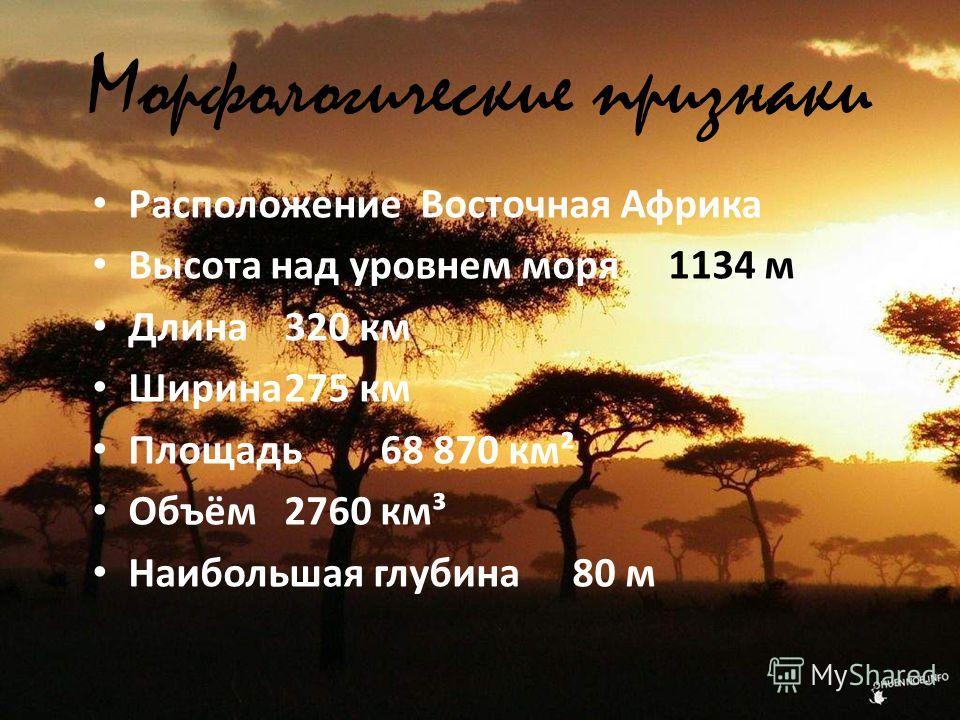 Морфологические признаки Расположение Восточная Африка Высота над уровнем моря1134 м Длина320 км Ширина275 км Площадь68 870 км² Объём2760 км³ Наибольшая глубина80 м