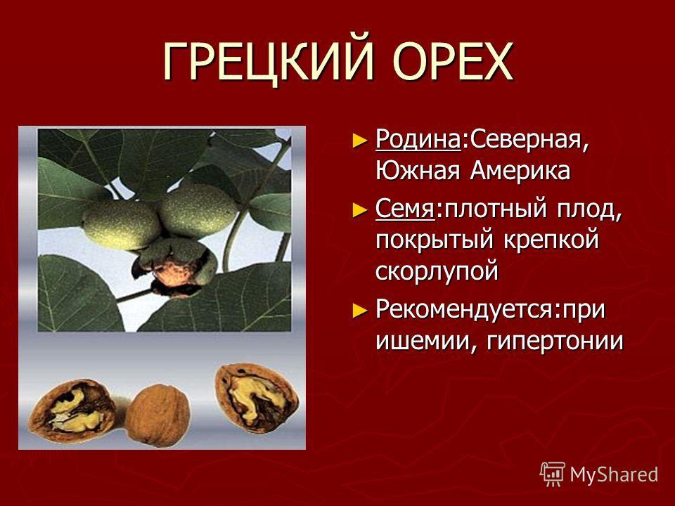 ГРЕЦКИЙ ОРЕХ Родина:Северная, Южная Америка Семя:плотный плод, покрытый крепкой скорлупой Рекомендуется:при ишемии, гипертонии