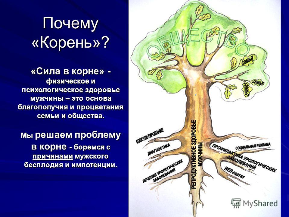 Почему «Корень»? «Сила в корне» - физическое и психологическое здоровье мужчины – это основа благополучия и процветания семьи и общества. Мы решаем проблему в корне - боремся с причинами мужского бесплодия и импотенции.