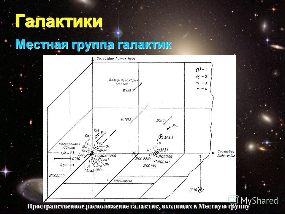 Галактики Местная группа галактик Пространственное расположение галактик, входящих в Местную группу Пространственное расположение галактик, входящих в Местную группу