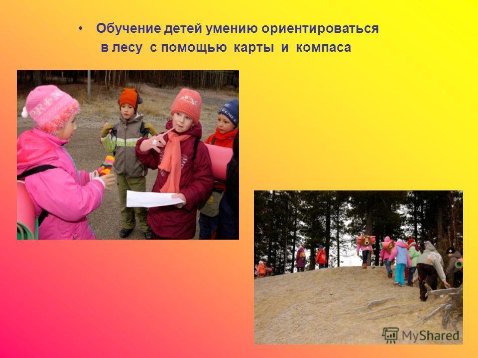 Обучение детей умению ориентироваться в лесу с помощью карты и компаса
