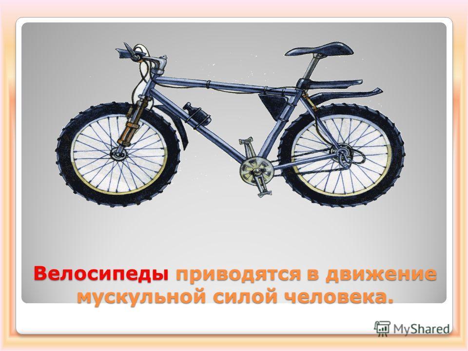 Велосипеды приводятся в движение мускульной силой человека.