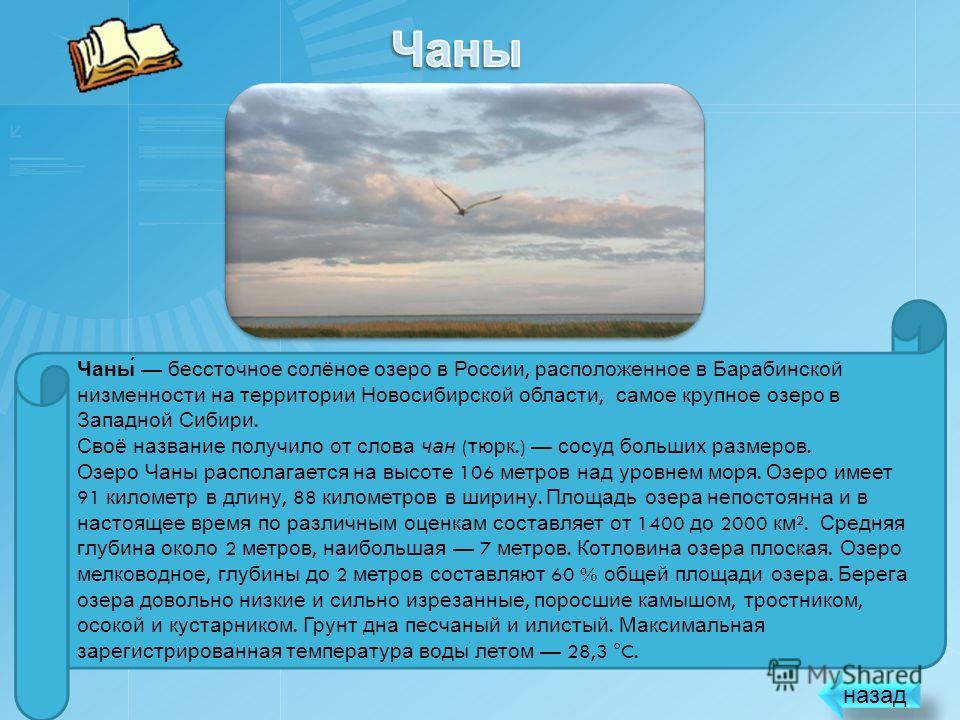 ЧАНЫ Самое большое по площади озеро Новосибирской области Далее X2 250 200 150 50 100 + Выйти из игры Крути !