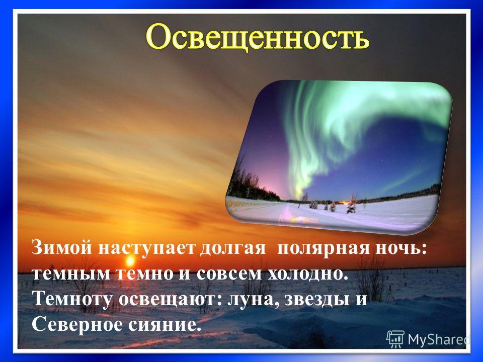 Зимой наступает долгая полярная ночь: темным темно и совсем холодно. Темноту освещают: луна, звезды и Северное сияние.