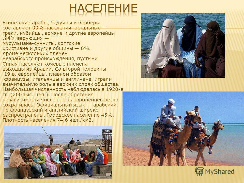 Египетские арабы, бедуины и берберы составляют 99% населения, остальные греки, нубийцы, армяне и другие европейцы.94% верующих мусульмане-сунниты, коптские христиане и другие общины 6%. Кроме нескольких племен неарабского происхождения, пустыни Синая