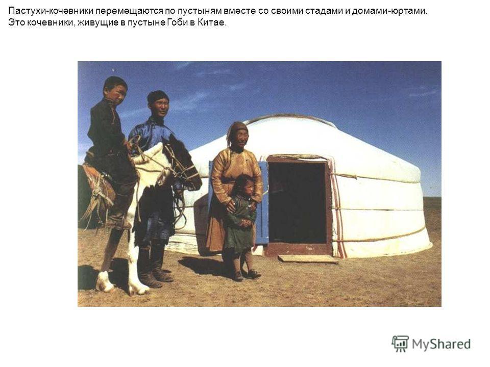 Пастухи-кочевники перемещаются по пустыням вместе со своими стадами и домами-юртами. Это кочевники, живущие в пустыне Гоби в Китае. Пастухи-кочевники перемещаются по пустыням вместе со своими стадами и домами-юртами. Это кочевники, живущие в пустыне