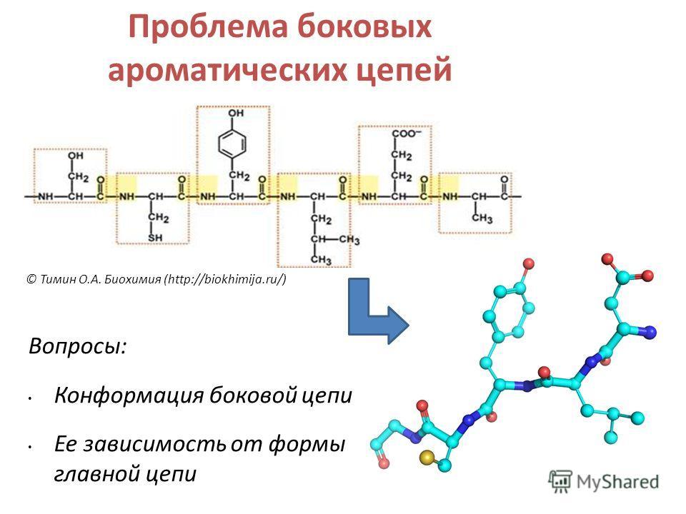 Вопросы: Конформация боковой цепи Ее зависимость от формы главной цепи © Тимин О.А. Биохимия (http://biokhimija.ru/) Проблема боковых ароматических цепей