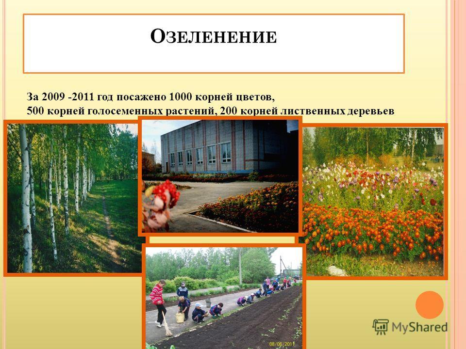О ЗЕЛЕНЕНИЕ За 2009 -2011 год посажено 1000 корней цветов, 500 корней голосеменных растений, 200 корней лиственных деревьев