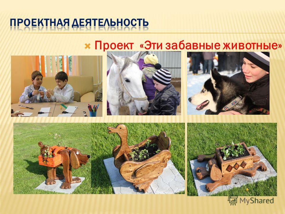 Проект «Эти забавные животные»