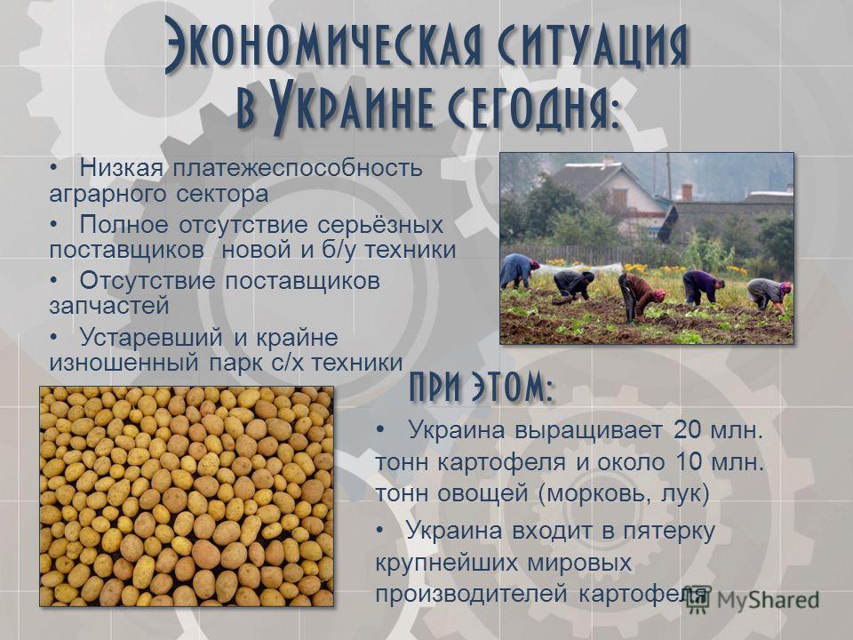 Экономическая ситуация в Украине сегодня: Низкая платежеспособность аграрного сектора Полное отсутствие серьёзных поставщиков новой и б/у техники Отсутствие поставщиков запчастей Устаревший и крайне изношенный парк с/х техники при этом: Украина выращ