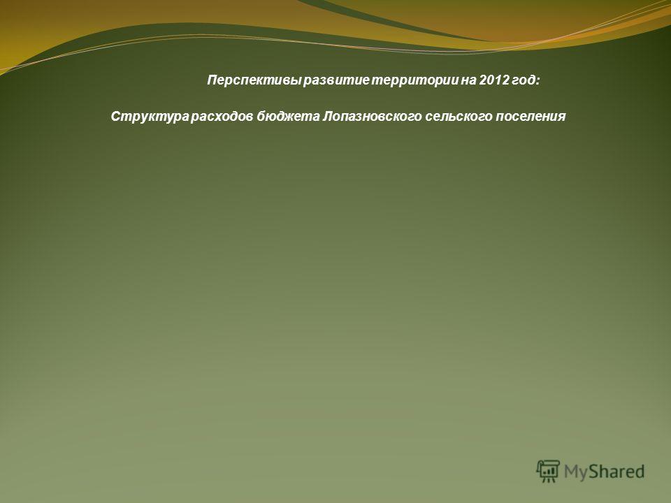 Перспективы развитие территории на 2012 год: Структура расходов бюджета Лопазновского сельского поселения
