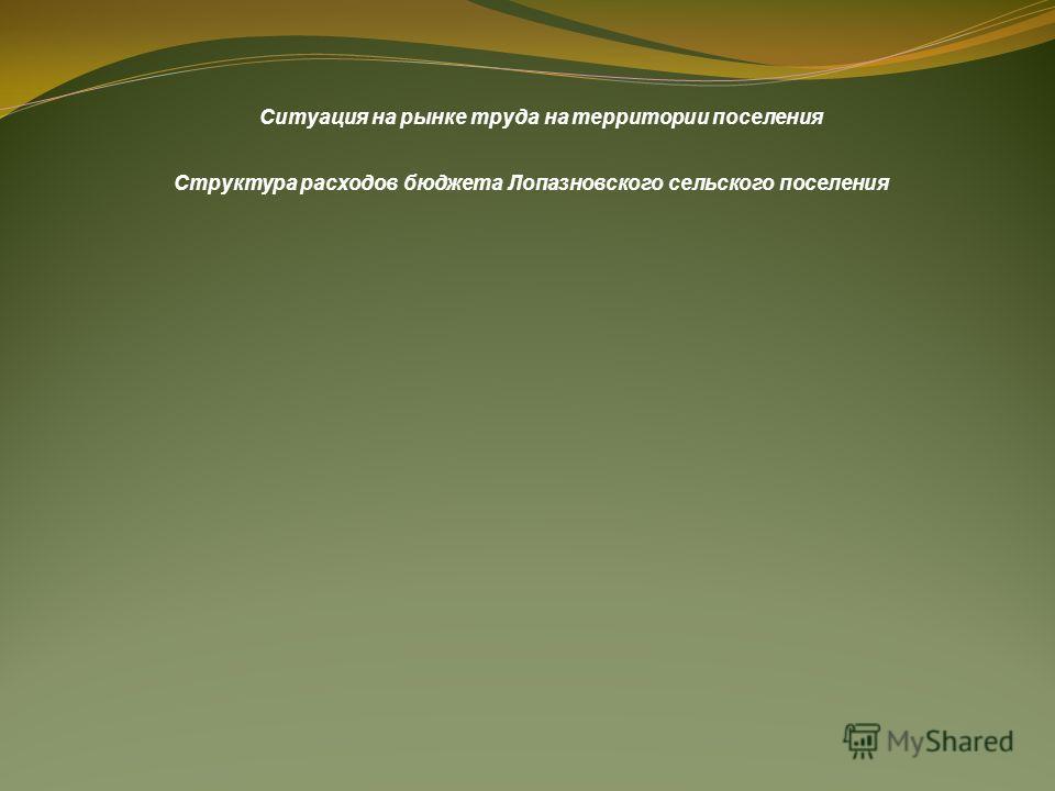 Ситуация на рынке труда на территории поселения Структура расходов бюджета Лопазновского сельского поселения