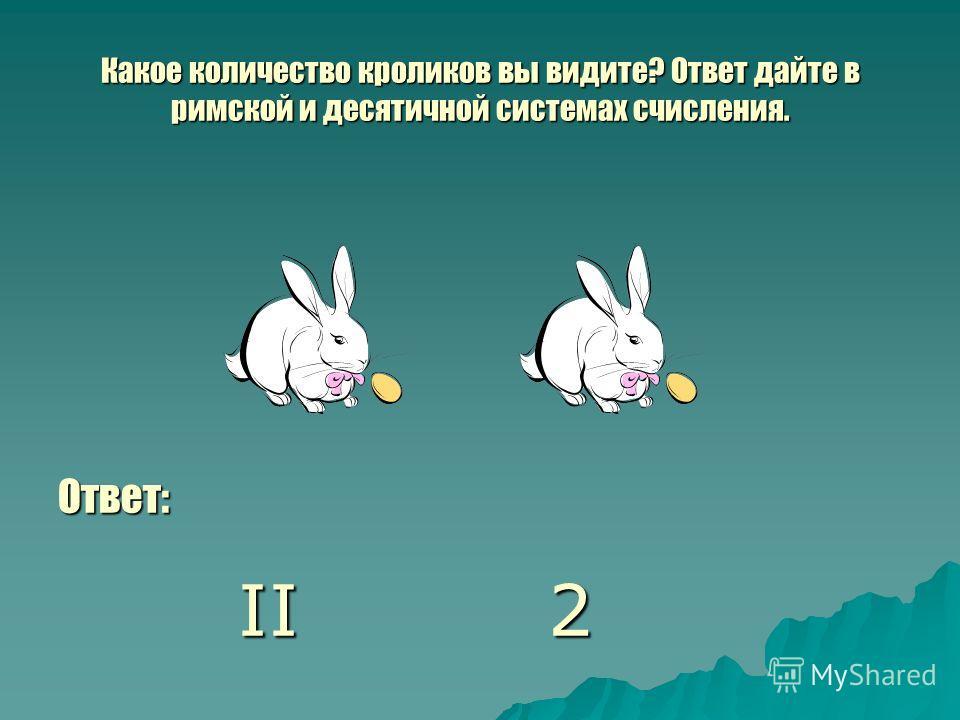 Какое количество кроликов вы видите? Ответ дайте в римской и десятичной системах счисления. Ответ: II 2 II 2