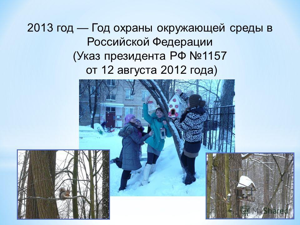 2013 год Год охраны окружающей среды в Российской Федерации (Указ президента РФ 1157 от 12 августа 2012 года)