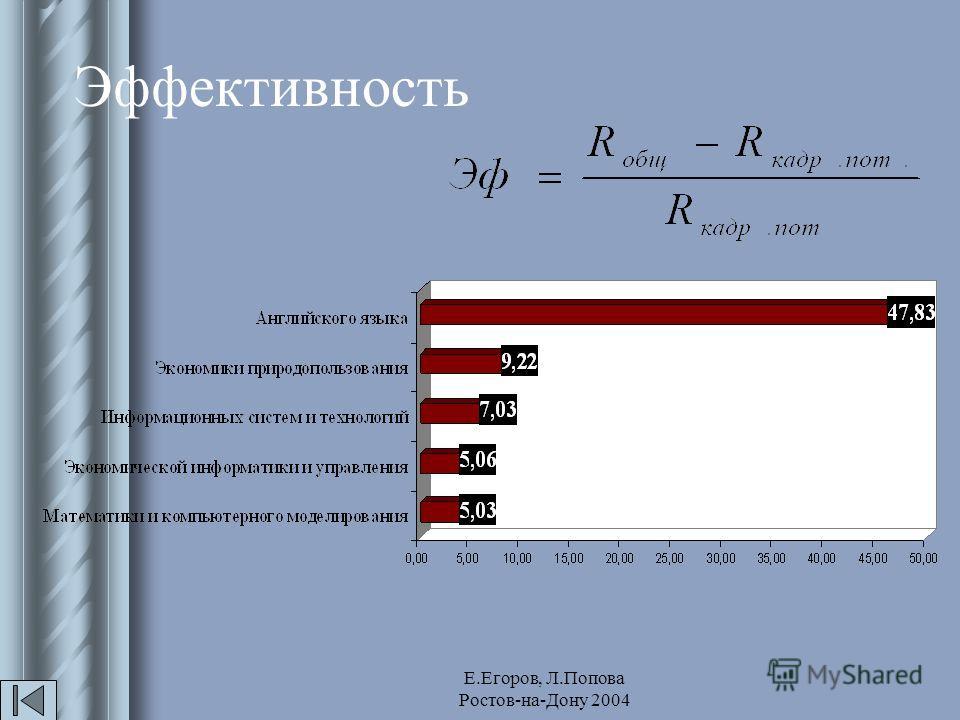 Е.Егоров, Л.Попова Ростов-на-Дону 2004 Эффективность