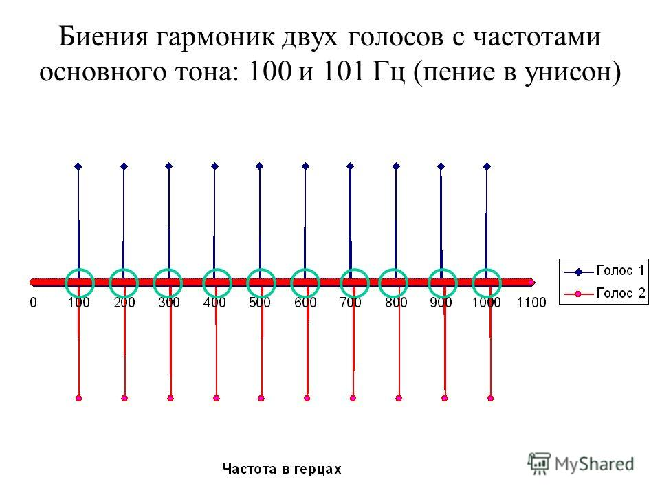 Биения гармоник двух голосов с частотами основного тона: 100 и 101 Гц (пение в унисон)