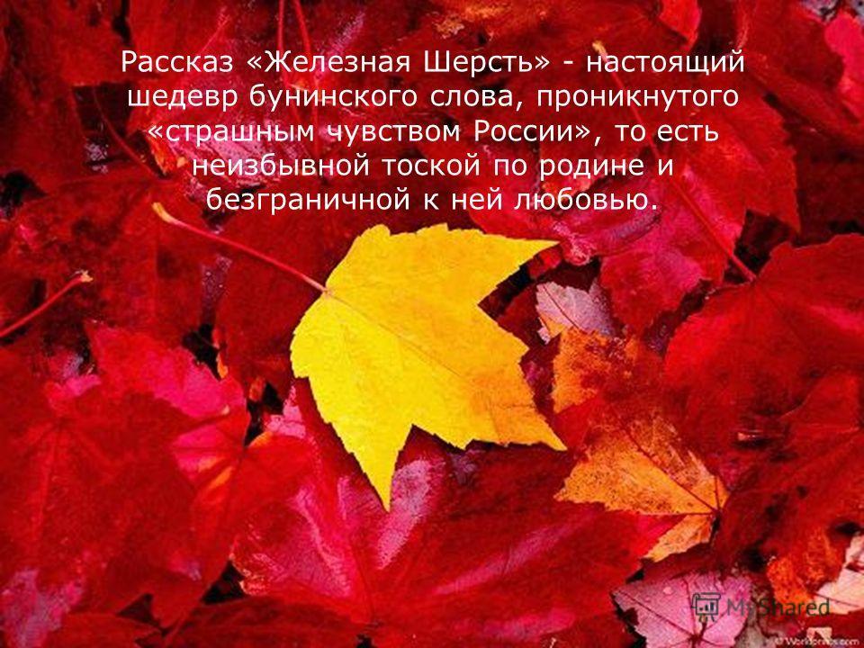 Рассказ «Железная Шерсть» - настоящий шедевр бунинского слова, проникнутого «страшным чувством России», то есть неизбывной тоской по родине и безграничной к ней любовью.