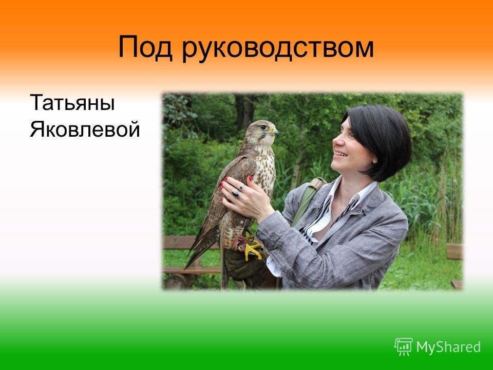 Под руководством Татьяны Яковлевой