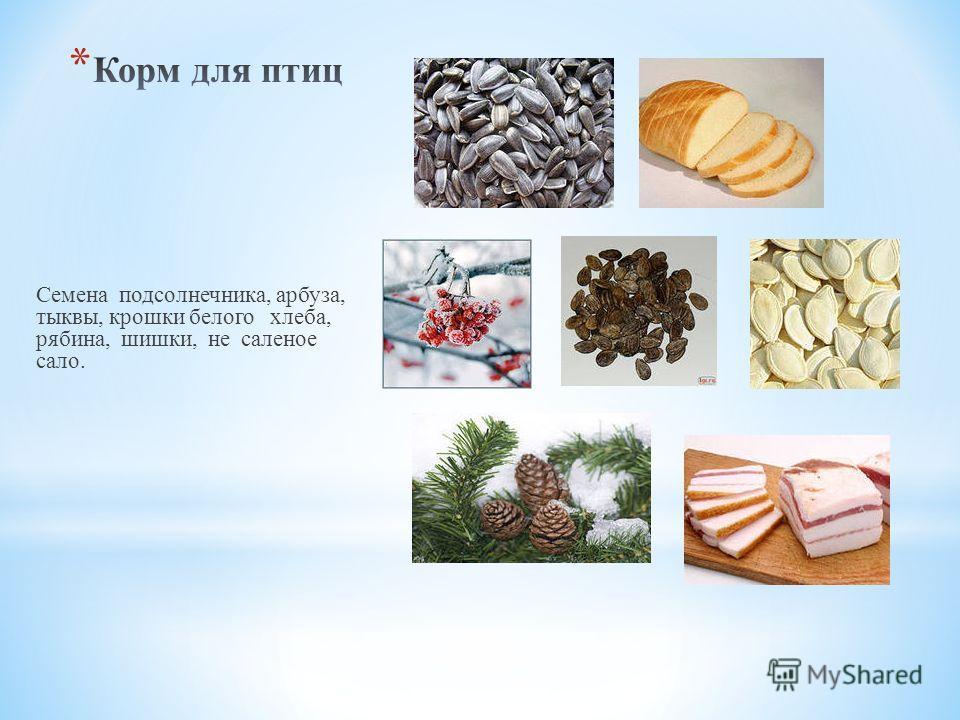 Семена подсолнечника, арбуза, тыквы, крошки белого хлеба, рябина, шишки, не саленое сало.