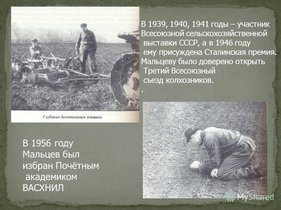 В 1939, 1940, 1941 годы – участник Всесоюзной сельскохозяйственной выставки СССР, а в 1946 году ему присуждена Сталинская премия. Мальцеву было доверено открыть Третий Всесоюзный съезд колхозников.. В 1956 году Мальцев был избран Почётным академиком