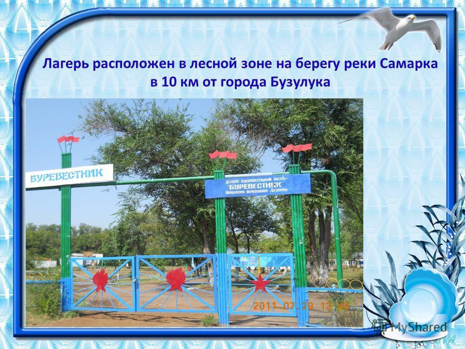 Лагерь расположен в лесной зоне на берегу реки Самарка в 10 км от города Бузулука