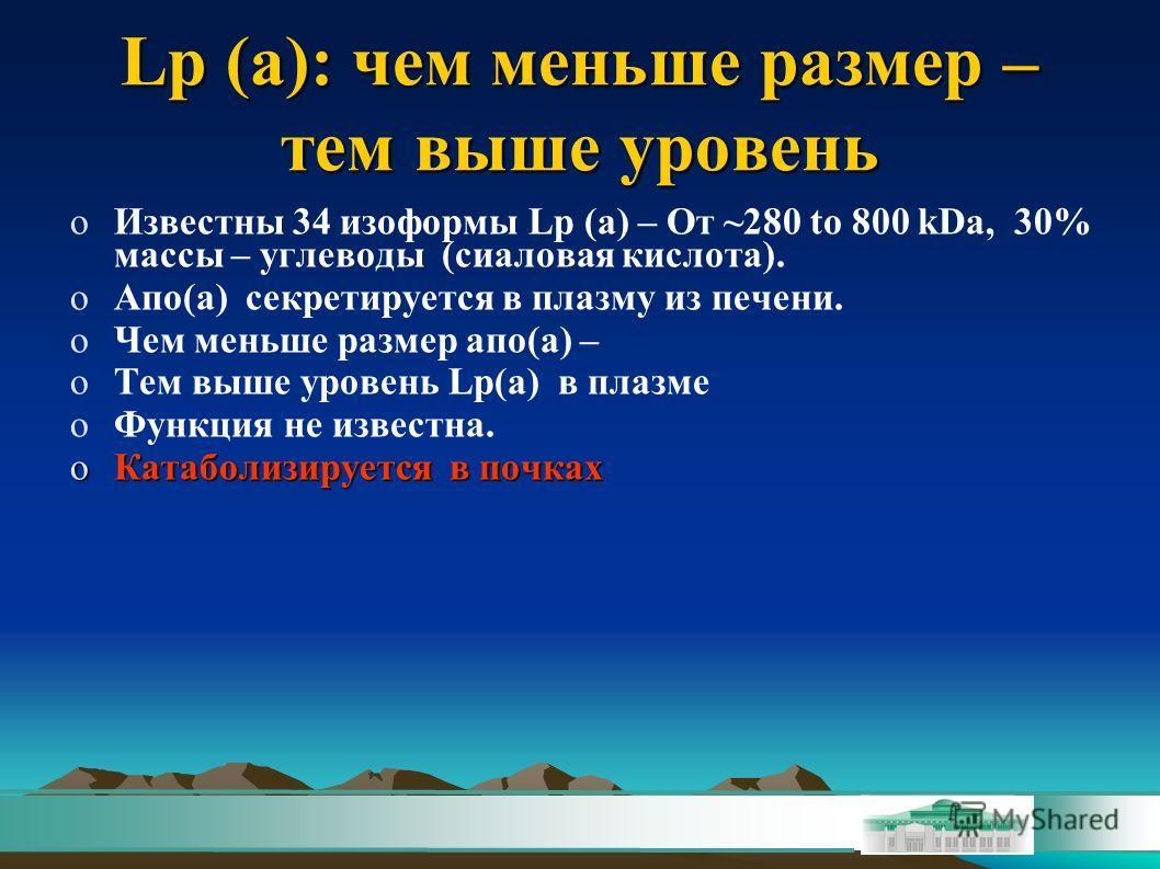 Lp (a): чем меньше размер – тем выше уровень oИзвестны 34 изоформы Lp (a) – От ~280 to 800 kDa, 30% массы – углеводы (сиаловая кислота). oАпо(a) секретируется в плазму из печени. oЧем меньше размер апо(а) – oТем выше уровень Lp(a) в плазме oФункция н