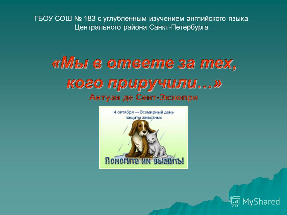 ГБОУ СОШ 183 с углубленным изучением английского языка Центрального района Санкт-Петербурга