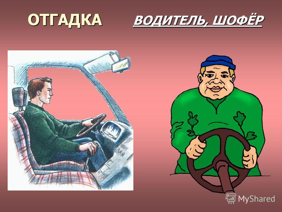 ОТГАДКА ВОДИТЕЛЬ, ШОФЁР