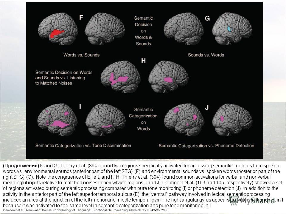 (Продолжение) F and G: Thierry et al. (394) found two regions specifically activated for accessing semantic contents from spoken words vs. environmental sounds (anterior part of the left STG) (F) and environmental sounds vs. spoken words (posterior p