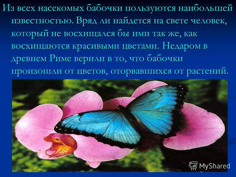 Из всех насекомых бабочки пользуются наибольшей известностью. Вряд ли найдется на свете человек, который не восхищался бы ими так же, как восхищаются красивыми цветами. Недаром в древнем Риме верили в то, что бабочки произошли от цветов, оторвавшихся
