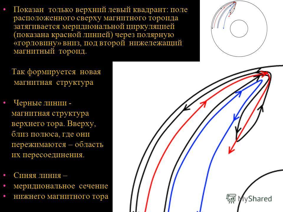 Показан только верхний левый квадрант: поле расположенного сверху магнитного тороида затягивается меридиональной циркуляцией (показана красной линией) через полярную «горловину» вниз, под второй нижележащий магнитный тороид. Так формируется новая маг