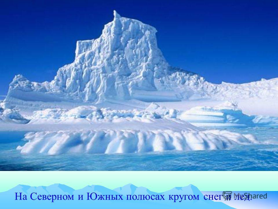 На Северном и Южных полюсах кругом снег и лед.