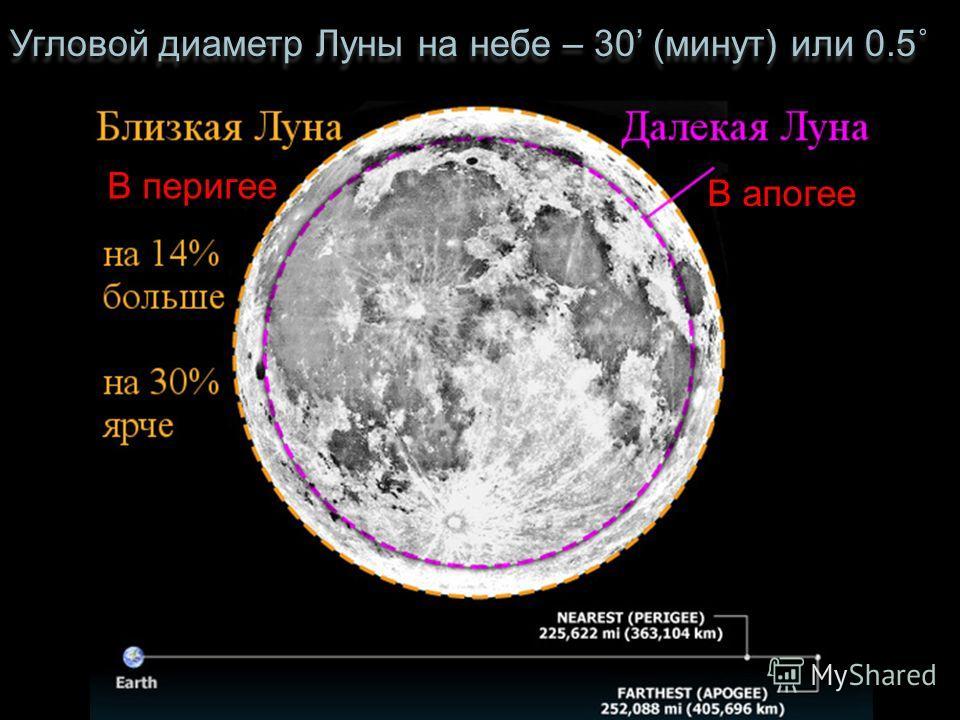 Угловой диаметр Луны на небе – 30 (минут) или 0.5˚ В апогее В перигее