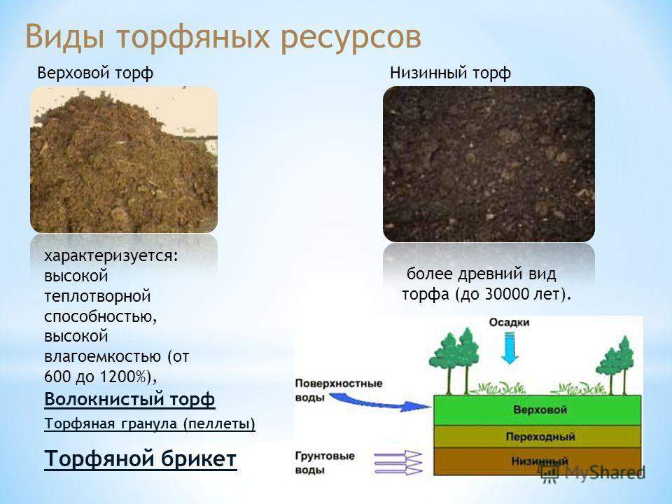 Виды торфяных ресурсов Верховой торф характеризуется: высокой теплотворной способностью, высокой влагоемкостью (от 600 до 1200%), Низинный торф более древний вид торфа (до 30000 лет). Волокнистый торф Торфяная гранула (пеллеты) Торфяной брикет